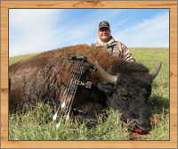 bison hunting